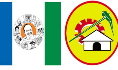 YCP and TDP
